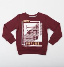 Толстовка (пуловер) для мальчика